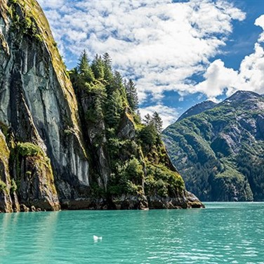 Alaska Cruise aboard the Carnival Freedom